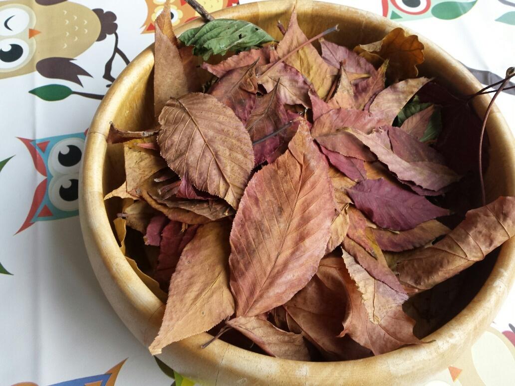 DIY herfst peuter