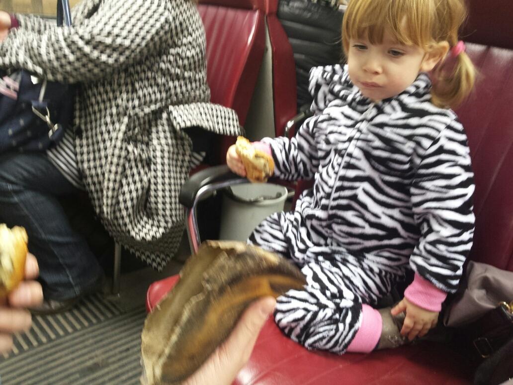Little People Safari