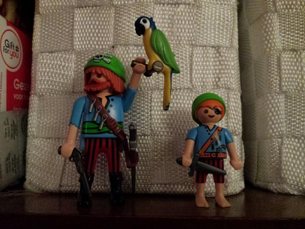 thema piraten playmobil