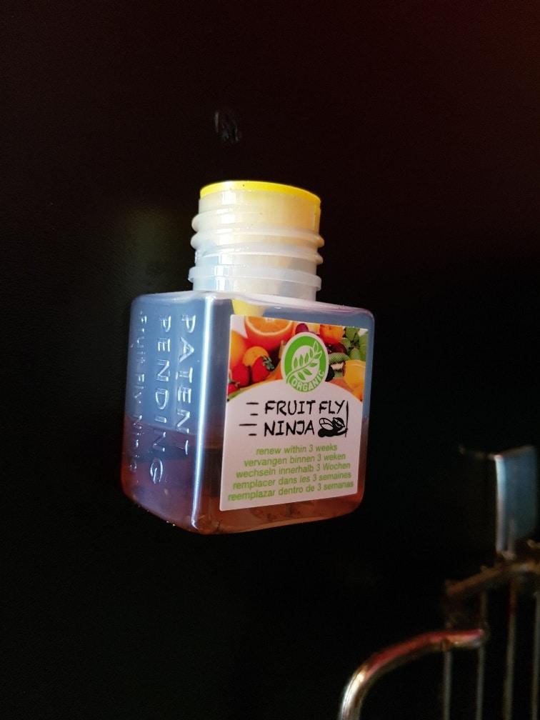 Fruitvliegjes vanger van fruitflyninja met 4 x 2 winactie for Fruitvliegjes in keuken