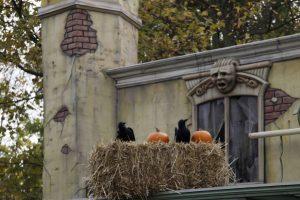 halloween in parken en kastelen