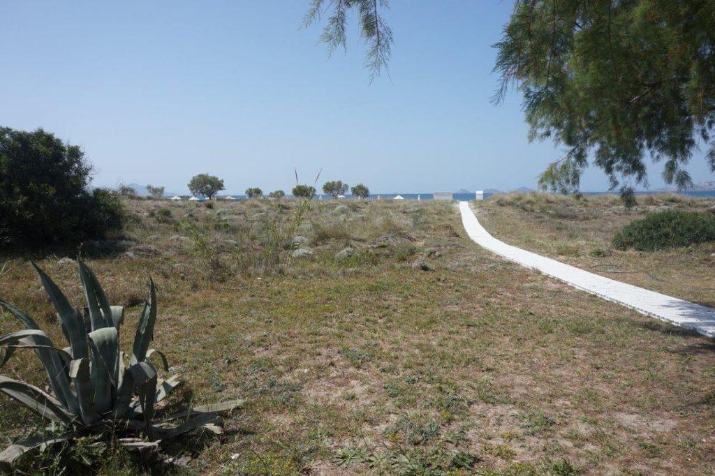 strand Pelagos hotel Kos Suites & Spa