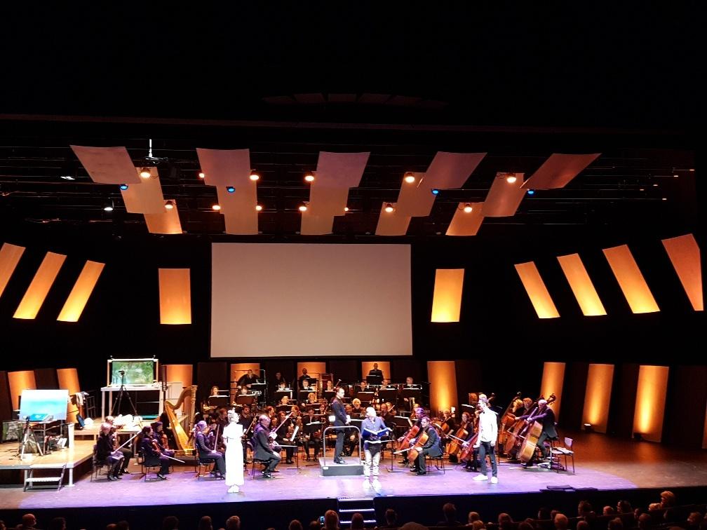 het Zwanenmeer voor kinderen residentie orkest