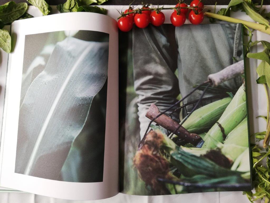 prachtige foto van groenten uit het kookboek Evergreen
