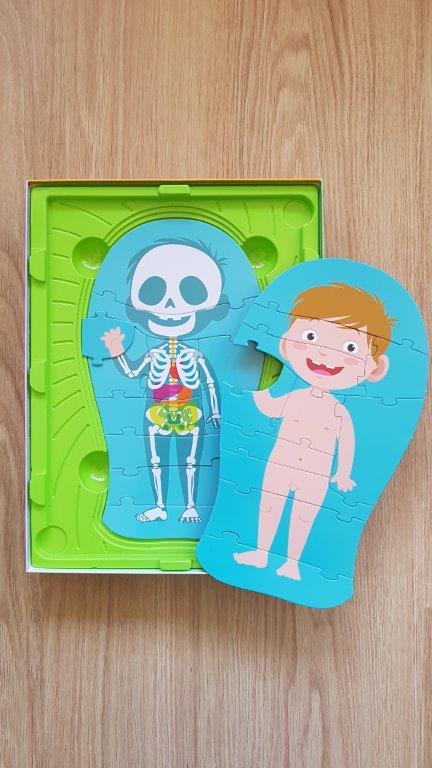 Puzzel over het menselijk lichaam
