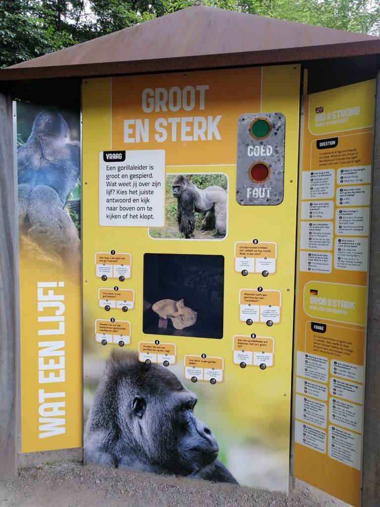 informatie over apen