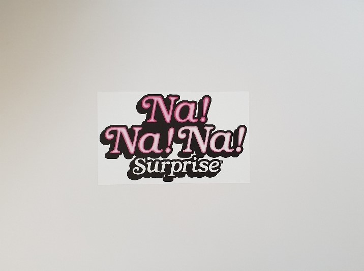 NaNaNa Surprise Bedroom