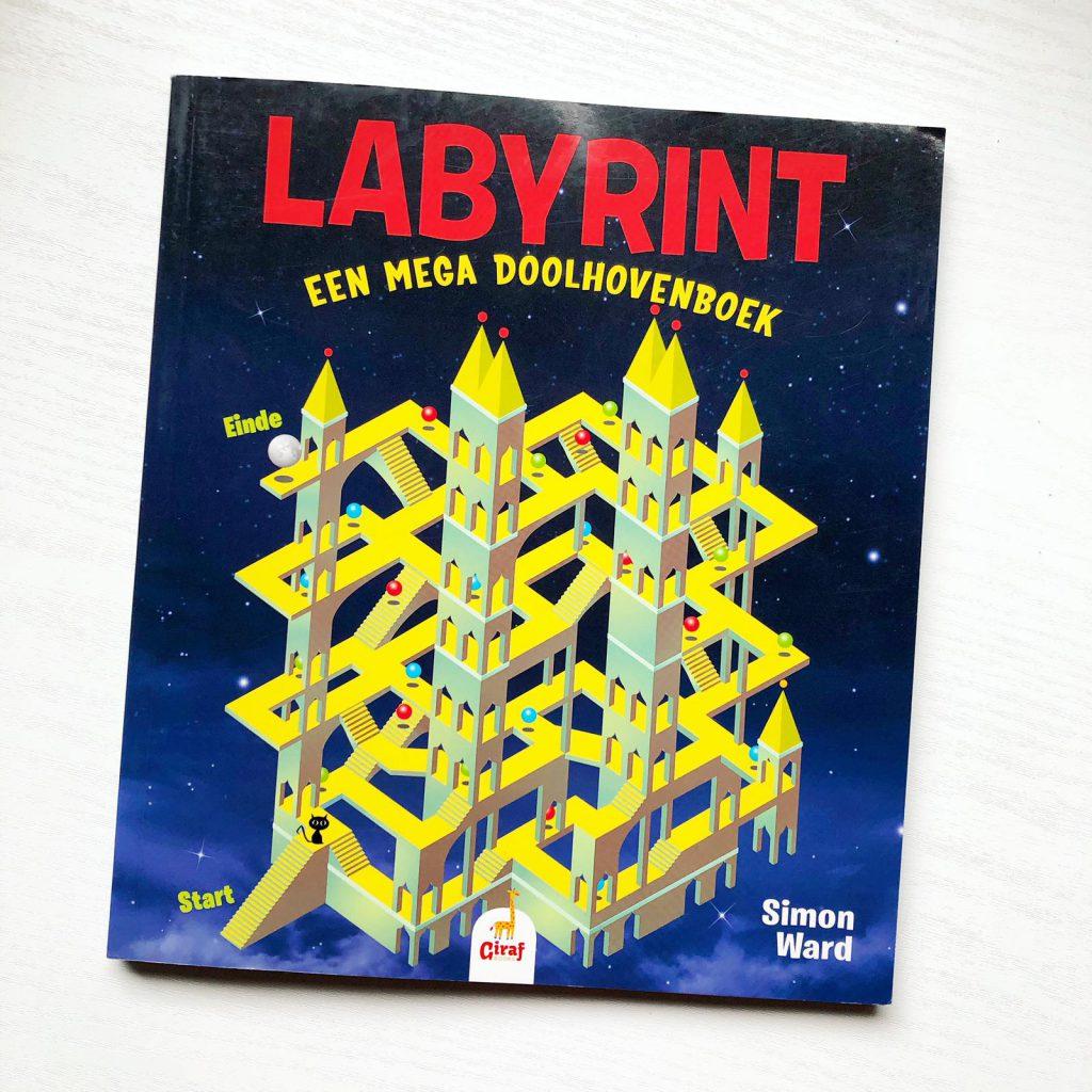 Labyrint een mega doolhovenboek
