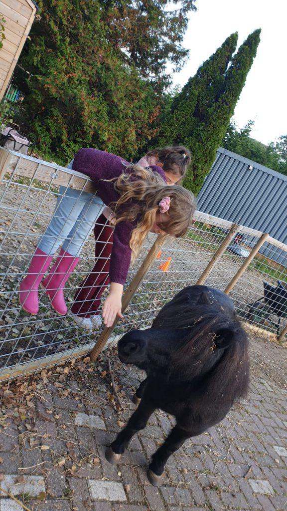 meisjes met pony