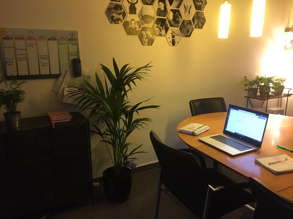 Een thuiswerkplek met luchtzuiverende planten