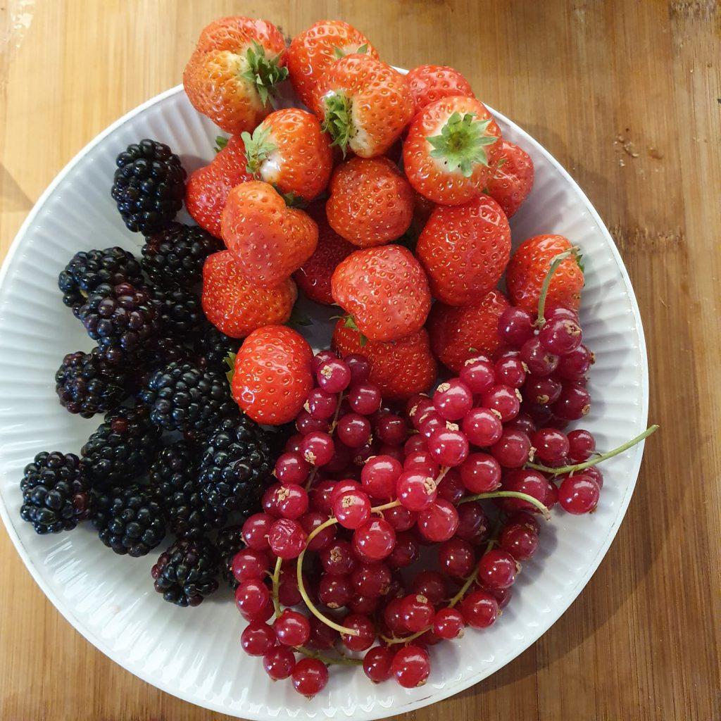seizoensfruit aardbeien frambozen rode bessen