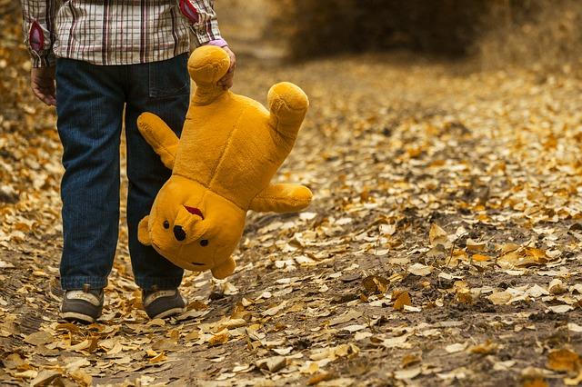 Financiële problemen in een gezin beer