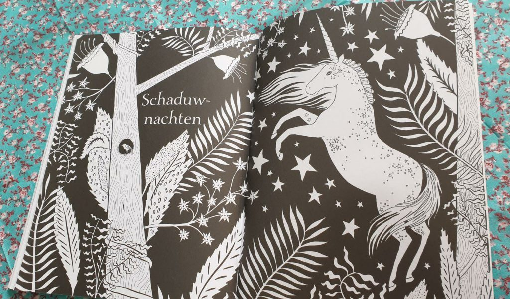 tekenboek eenhoorns