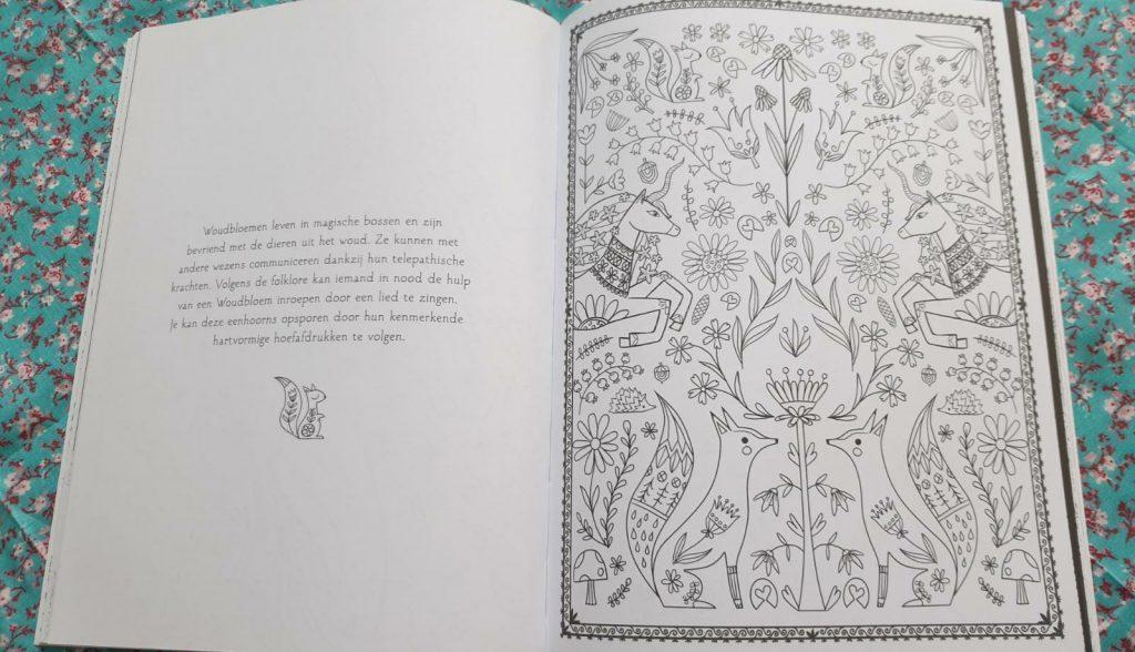tekenboek leesboek eenhoorns