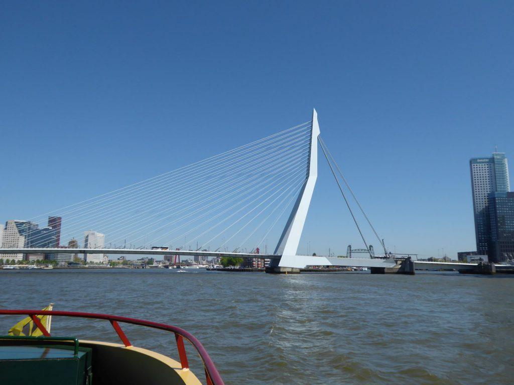 Bezoek Rotterdam met kinderen Erasmusbrug