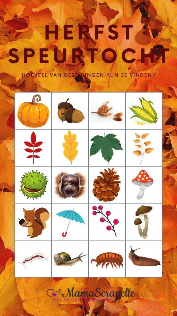 herfstwandeling met bingokaart